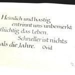 Der handgeschriebene Text von Gudrun Zapf-von Hesse mit kleiner Signatur unten rechts
