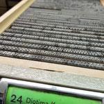Die Bleilettern der Diotima kursiv
