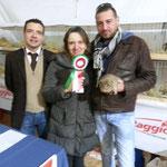 Migliore di razza Americano cremagouti monocolore EWOKS Jack propritario Elena Pozzi e allevatore PierLuigi Simonini