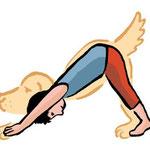 Posture du chien, tête en bas