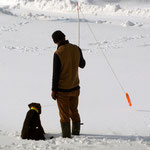 Winter in Rumänien......Schnee Schnee Schnee, erste Übungen mit der Reizangel