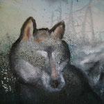 """Der Wolf """"erscheint"""" im September 2011"""