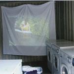 Waschcontainer   Videoinstallation