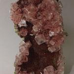 Rosa Halit (Stufe ca. 15 cm), Gem-O-Rama, Trona, CA