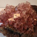 Durch Algeneinschlüsse rosa gefärbter Halit (Stufenbreite ca. 30 cm), Gem-O-Rama, Trona, CA