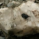 Frisch geborgener Brookit (1 cm). Bei dieser Fundstelle häufig teilweise in Rutil umgewandelt, Elm, Glarus