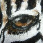 Auge Pastell Zebra (c)D.Saul 2013