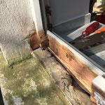 Instandsetzung beschädigter Rahmen...