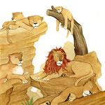 """Illustration aus """"Tierpfleger für einen Tag"""" (siehe Kinderbücher), im Buchhandel erhältlich"""