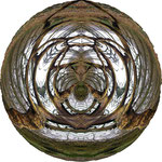 Mandala - Vorwinterstimmung 2010