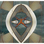 Stormbringer - Photomalerei 2010 auf Photopapier gedruckt