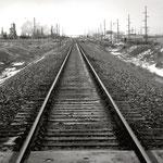 "Tracks, 9.5"" x 9.5"", 2013"