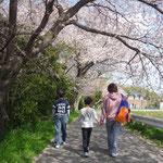 散歩コース。
