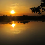 Sonnenuntergang am Rhein mit Blick Richtung Elsass