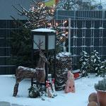 Weihnachten in unserem Garten