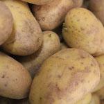 Kartoffeln für Ihre Speisen
