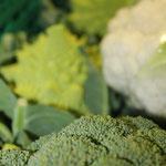 Frisches Gemüse wie vom Markt