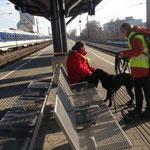Lucky lässt sich durch andere Fahrgäste am Bahnsteig nicht beirren