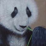 """Panda"" - acrylique "" 30 x 30 cm"