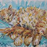 Chat roux fond turquoise - aquarelle originale 40X30cm - 180 €