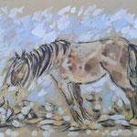 Petit cheval gouache PCHg005