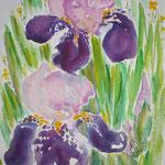 Deux iris - aquarelle (vendu) (pas de reproduction)
