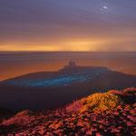 Nachtelijk Zeevonk bij Vlieland groet U