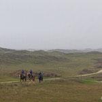 ' Duinruiters Kantonnierspad Vlieland'