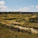 Camping Stortemelk Vlieland