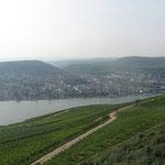 Blick auf die Weinberge und den Rhein (UNESCO-Weltkulturerbe)