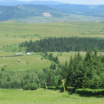 Umgebung von Toplita mit Skianlage