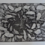 2017 /Radierung, Aquatinta; Kaltnadel /20x26cm