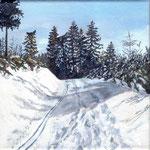 Schneeweg zum Hinterwaldkopf / Schwarzwald