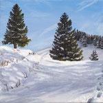 Schnee auf dem Hinterwaldkopf / Schwarzwald