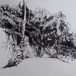 2017, Rohrfeder, Annette Burrer