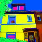 Haus-Art