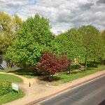 Blick vom Hotelzimmer auf Park und Rathaussee