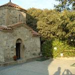Кущ ожини на місці де була келія св. рівноапостольної Ніни