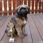 Tashi´s erster Pokal mit 6 Monaten