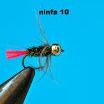 Amo: standard dal #12 al #18 Coda: tag rosso Globrite n. 4 Corpo : herl di pavone Rib: tinsel oro o filo di montaggio nero Collarino:  un giro di waterhen Testa: bead argento