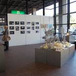 中井さんの写真とリュートさんの作品