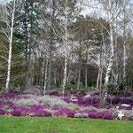 Gartengestaltung in der WIG Oberlaa (Ostermontag 5.4.2010)