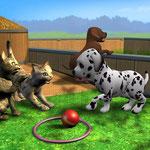 Traumberuf Tiertrainer 3D