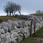 Trockensteinmauern auf der Hochfläche unmittelbar an der Abbruchkante