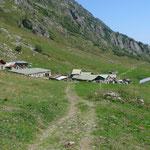 Alp Emaney