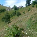 Aufstieg zur Alpe La Res