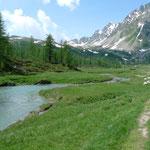 Auf der Alpe Buscagna