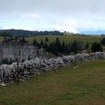Blick über die Hochfläche, im Hintergrund die Berner Alpen