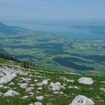 Blick vom Le Suchet zum Lac de Neuchâtel