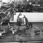 coq,poule,poussins zinc brut